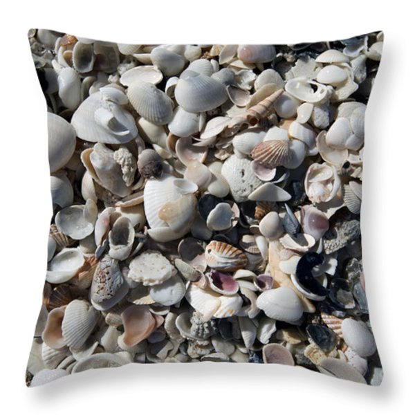 Remnants Throw Pillow by Terri Winkler