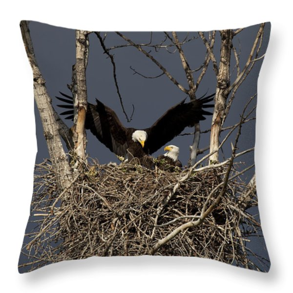 Returning Home to the Nest Throw Pillow by Mike  Dawson