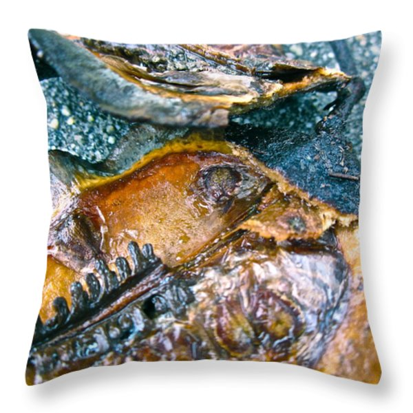 Revealing Tree Pod Throw Pillow by Gwyn Newcombe