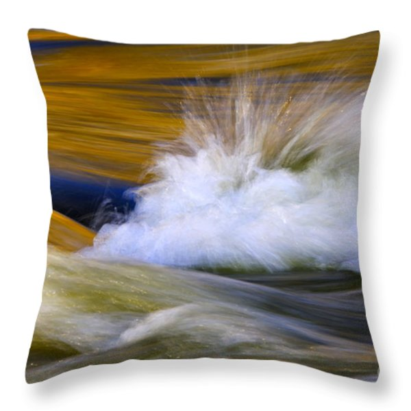 River Throw Pillow by Silke Magino