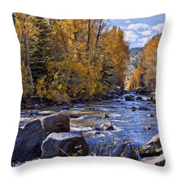 Rocky Mountain Water 8 x 10 Throw Pillow by Kelley King