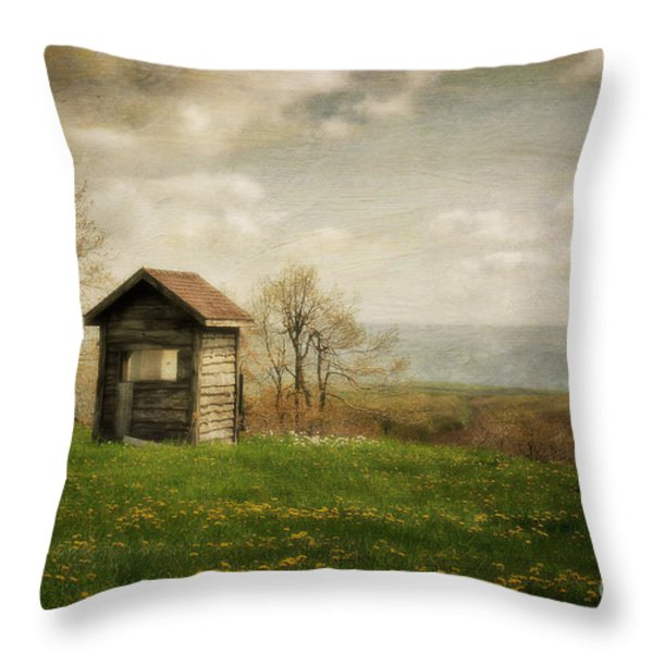 Room With A View Throw Pillow by Lois Bryan