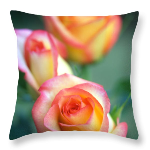 Rose Trio Throw Pillow by Kathy Yates