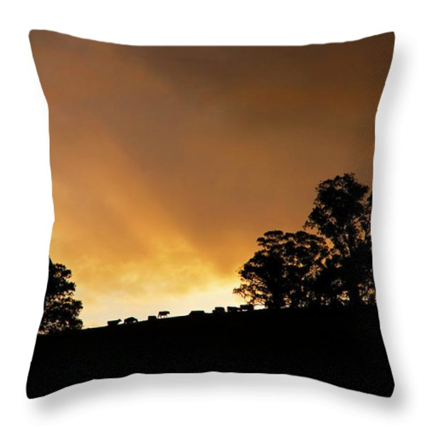 Rural Glory Throw Pillow by Mike  Dawson