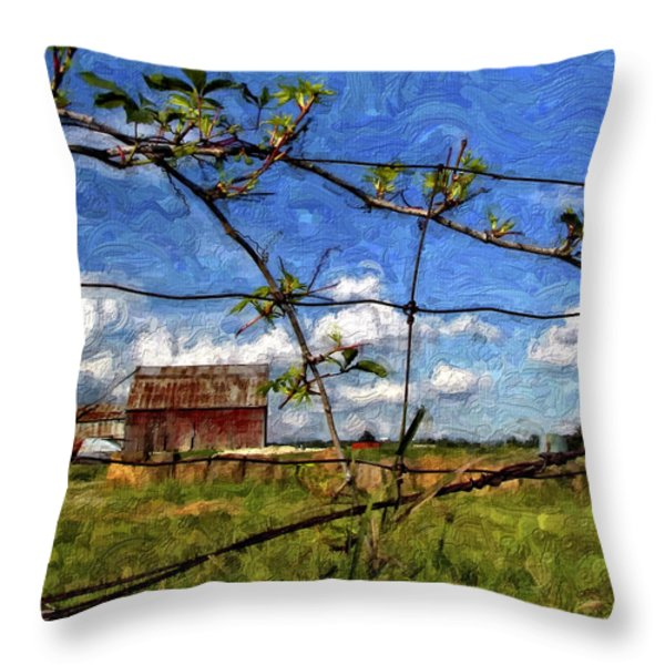 Rustic Frame Impasto Throw Pillow by Steve Harrington