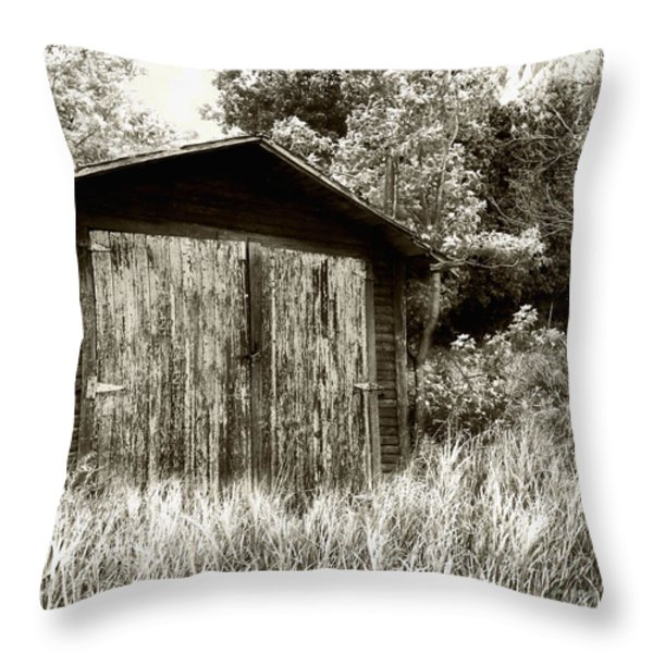 Rustic Shed Throw Pillow by Perry Webster