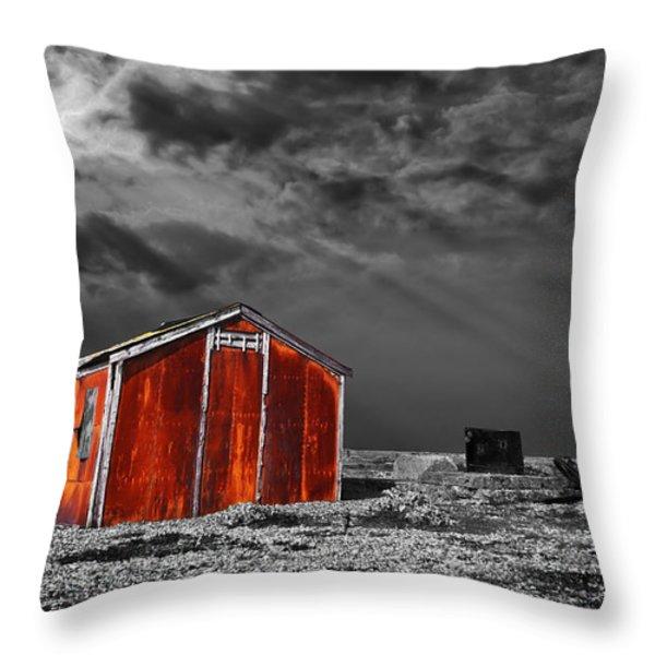 rusting away Throw Pillow by Meirion Matthias