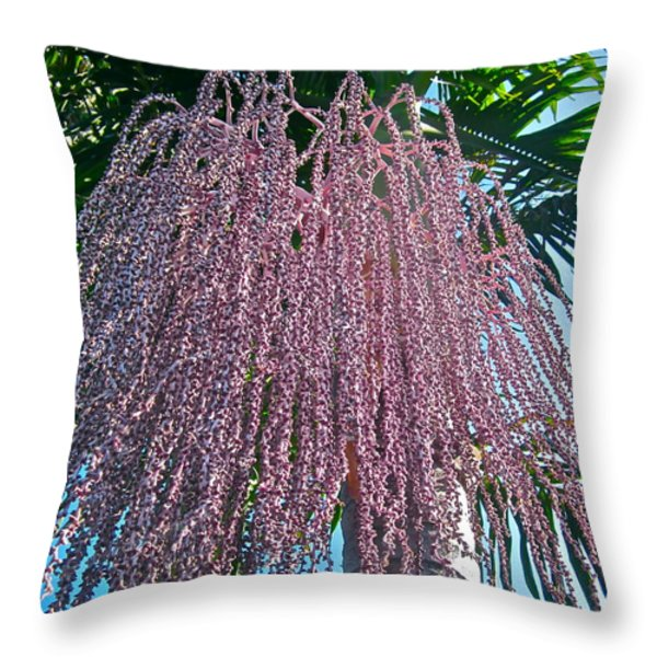 San Clemente Sunday Throw Pillow by Gwyn Newcombe