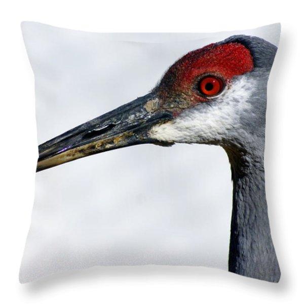 Sandhill Crane Throw Pillow by Marty Koch