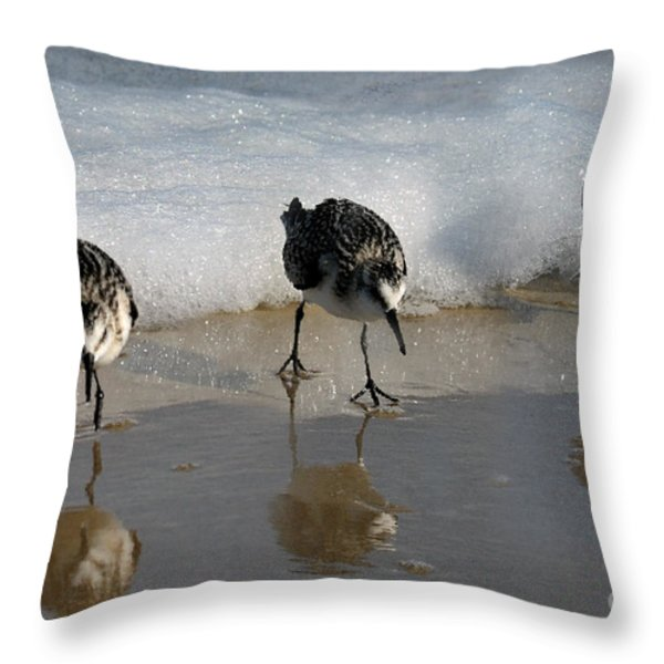 sandpipers feeding Throw Pillow by Dan Friend