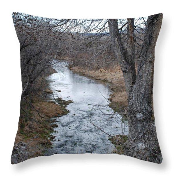 Santa Fe River Throw Pillow by Rob Hans