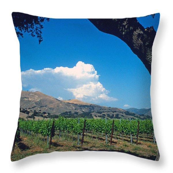 Santa Ynez Vineyard View Throw Pillow by Kathy Yates