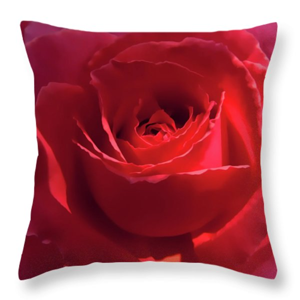 Scarlet Rose Flower Throw Pillow by Jennie Marie Schell