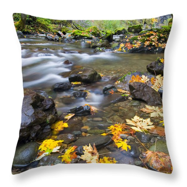 Scattered About Throw Pillow by Mike  Dawson