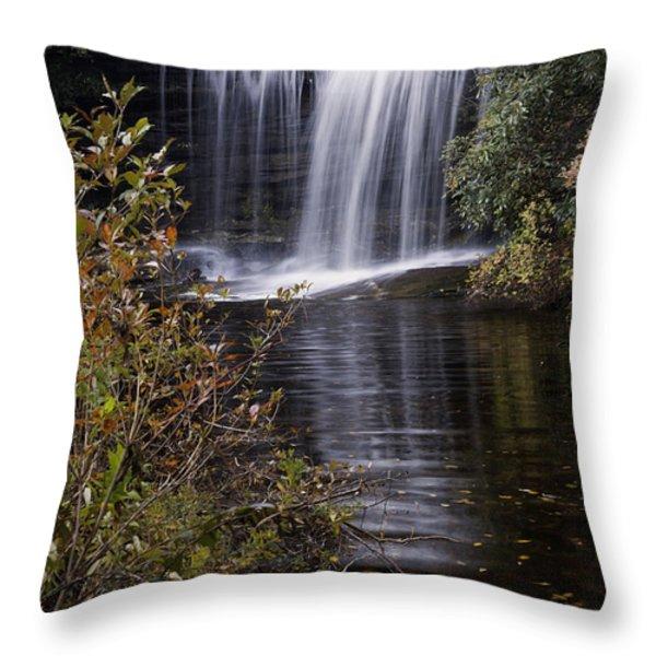 Schoolhouse Falls Throw Pillow by Rob Travis