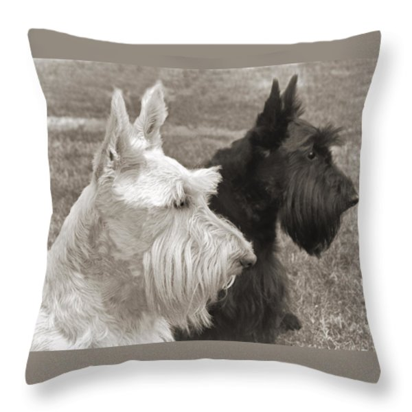 Scottish Terrier Dogs in Sepia Throw Pillow by Jennie Marie Schell