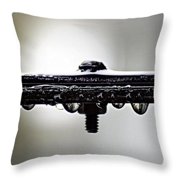 Screw This Rain Throw Pillow by Lisa Knechtel
