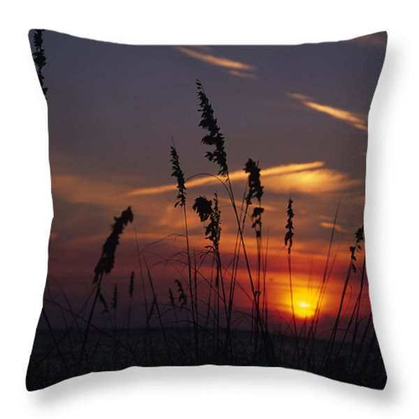 Sea Oats Blow In The Breeze As The Sun Throw Pillow by Stacy Gold