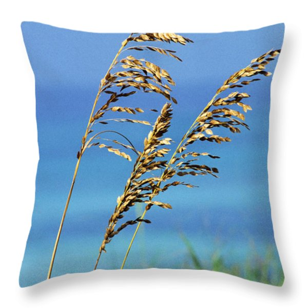 Sea Oats Gulf of Mexico Throw Pillow by Thomas R Fletcher
