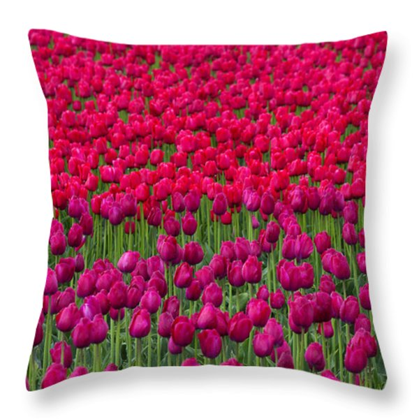 Sea Of Tulips Throw Pillow by Mike  Dawson