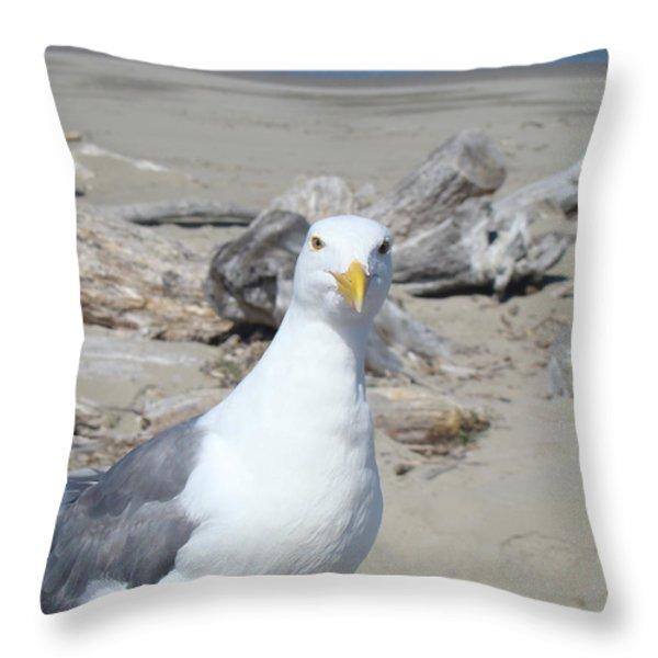 Seagull Bird art prints Coastal Beach Driftwood Throw Pillow by Baslee Troutman