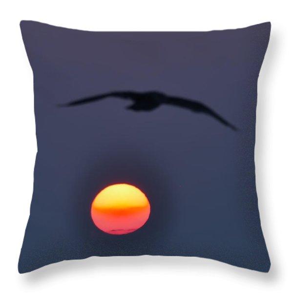 Seagull Sun Throw Pillow by Bill Cannon