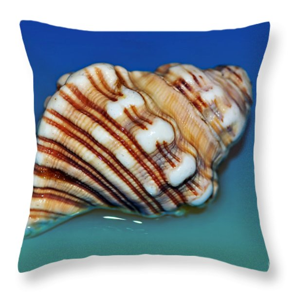 Seashell Wall Art 1 Throw Pillow by Kaye Menner