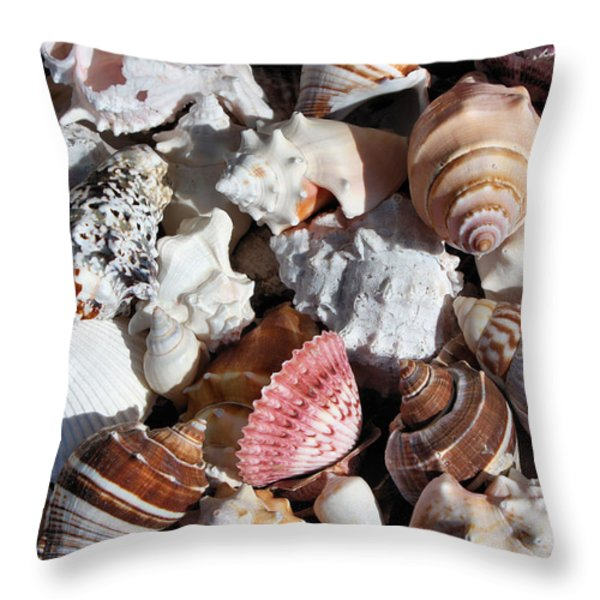 Seashells Throw Pillow by Kristin Elmquist