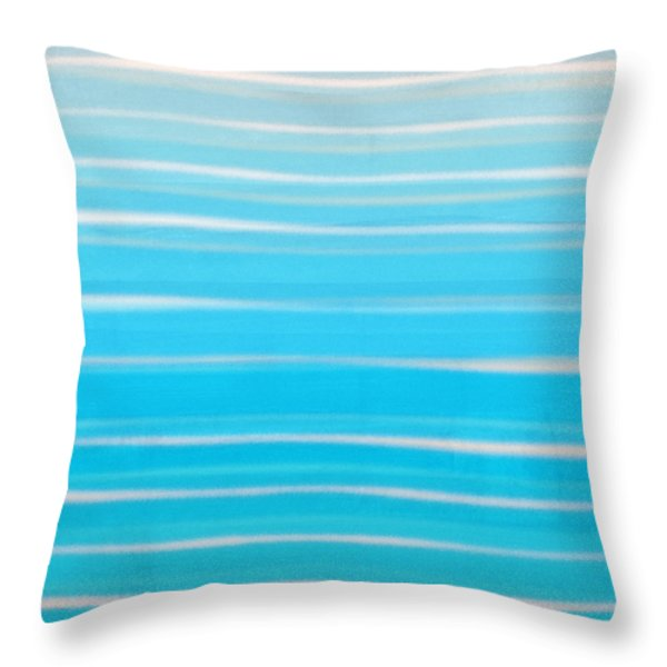 Throw Pillow featuring the painting Seashore Colors by Frank Tschakert