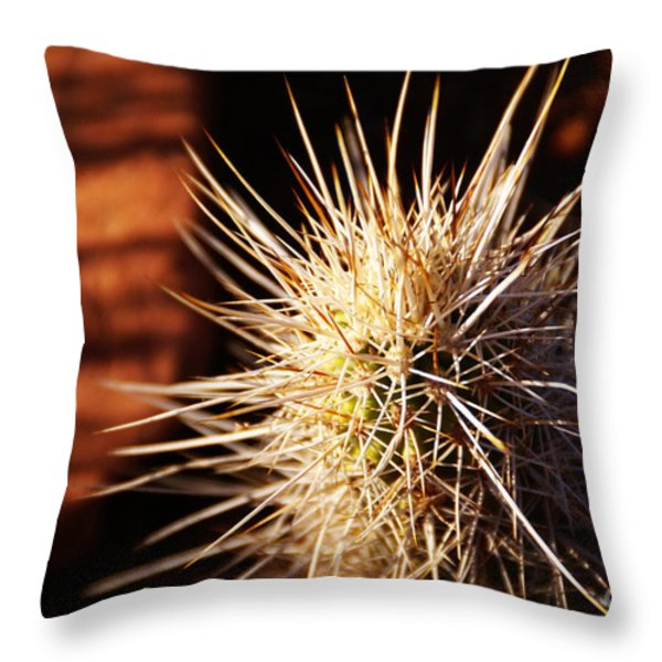 Sedona Throw Pillow by Linda Knorr Shafer
