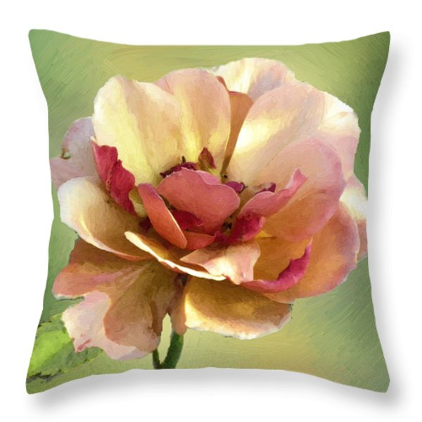 Seductive Throw Pillow by RC DeWinter