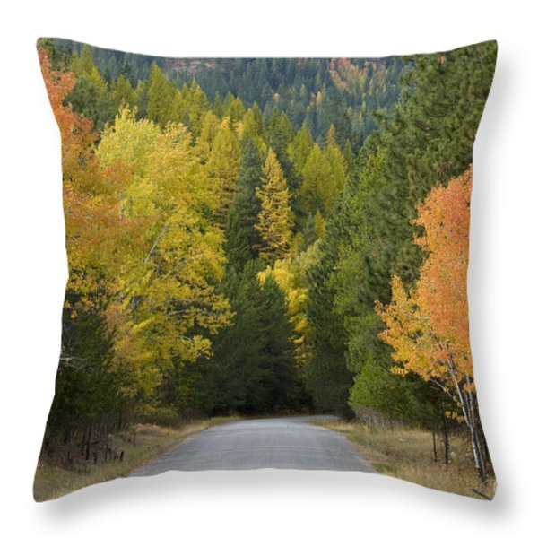Selkirk Color Throw Pillow by Idaho Scenic Images Linda Lantzy
