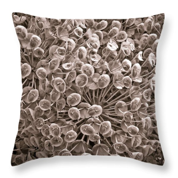 Throw Pillow featuring the photograph Sepia Nature Pattern by Frank Tschakert