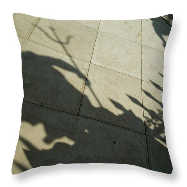 Shadow Of The Statue Of Neptune Throw Pillow by Todd Gipstein