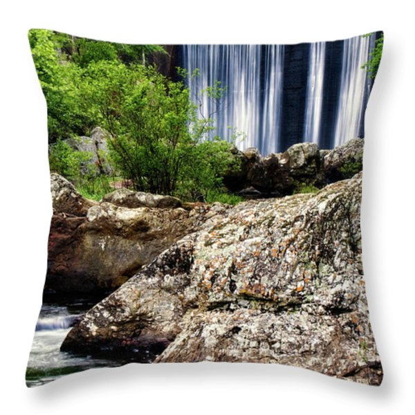 Shady Lake Falls Throw Pillow by Lana Trussell