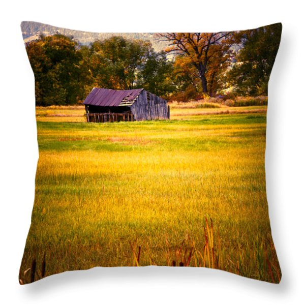 Shed in Sunlight Throw Pillow by Marilyn Hunt