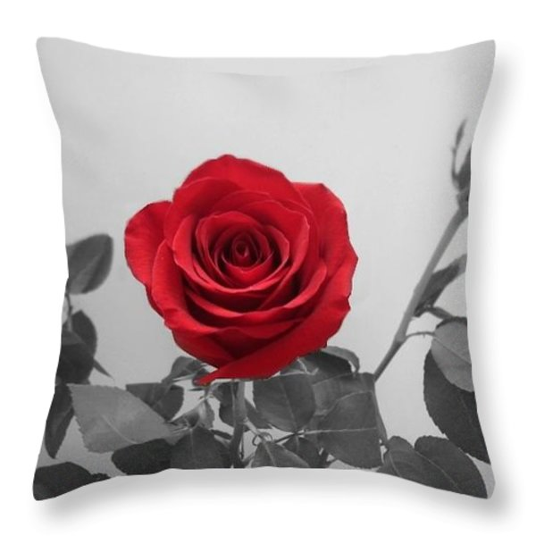 Shining Red Rose Throw Pillow by Georgeta  Blanaru