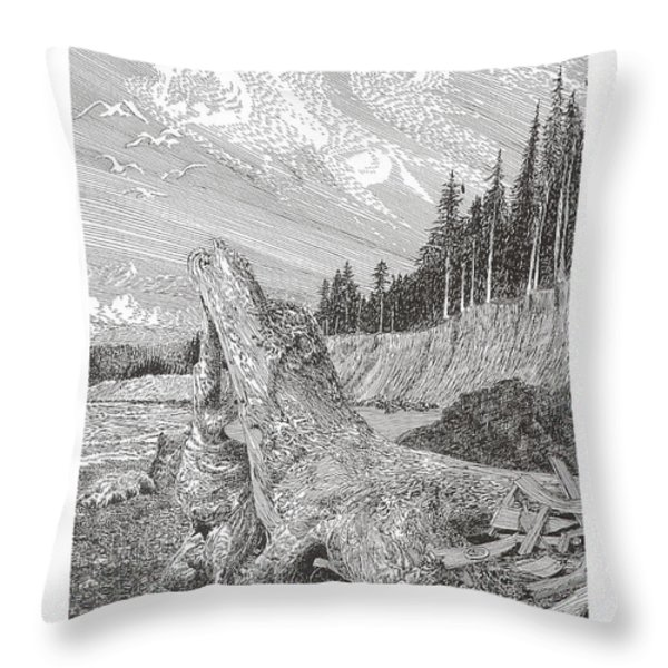 Shipwrecked Throw Pillow by Jack Pumphrey