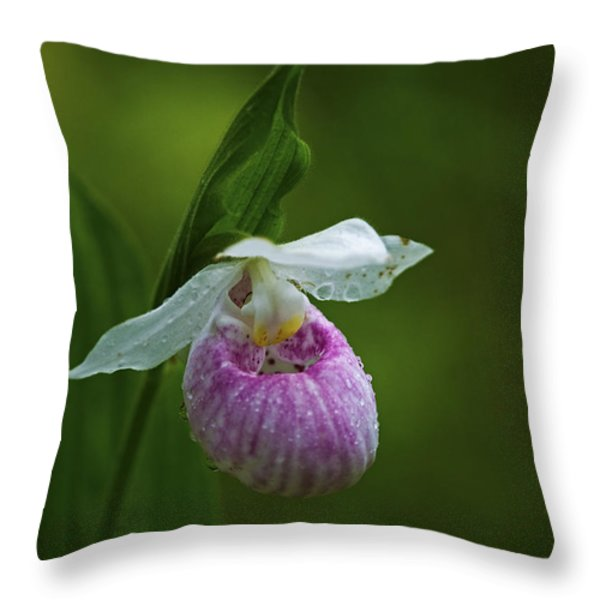 Showy Lady's Slipper.. Throw Pillow by Nina Stavlund