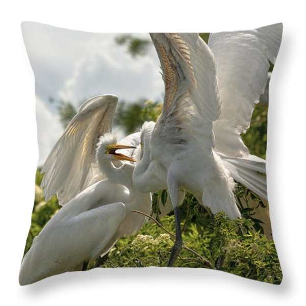 Sibling Squabble Throw Pillow by Christopher Holmes