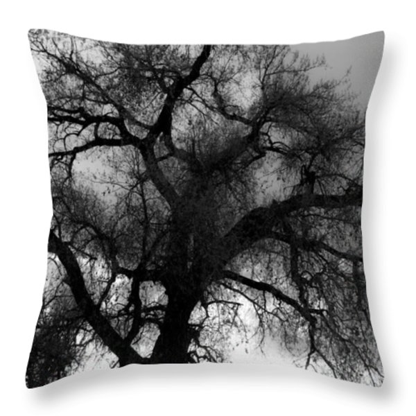 Silhouette Throw Pillow by James BO  Insogna