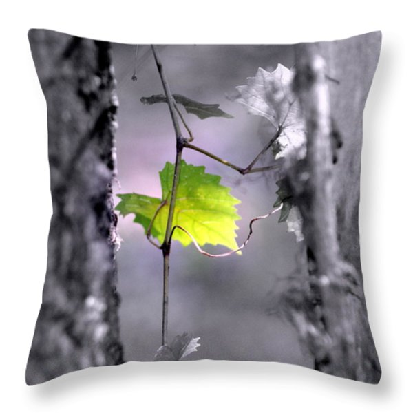 Simplicity Throw Pillow by Jennifer  Diaz