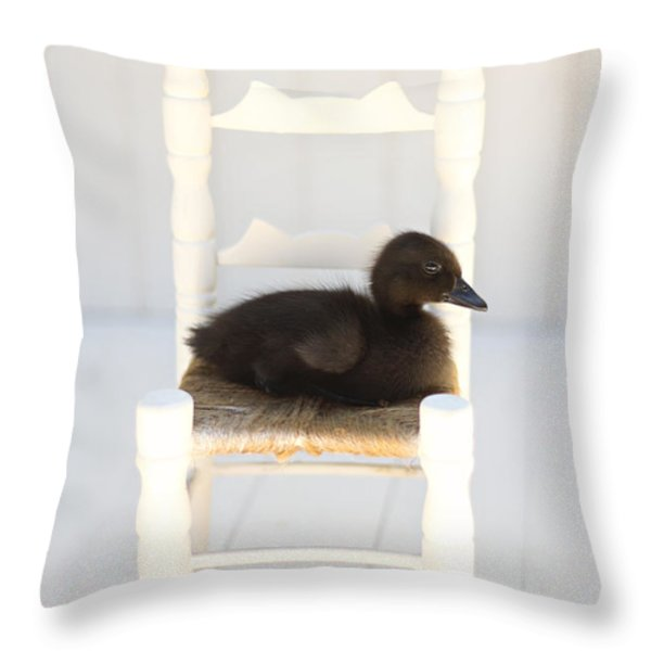 Sitting Duck Throw Pillow by Amy Tyler
