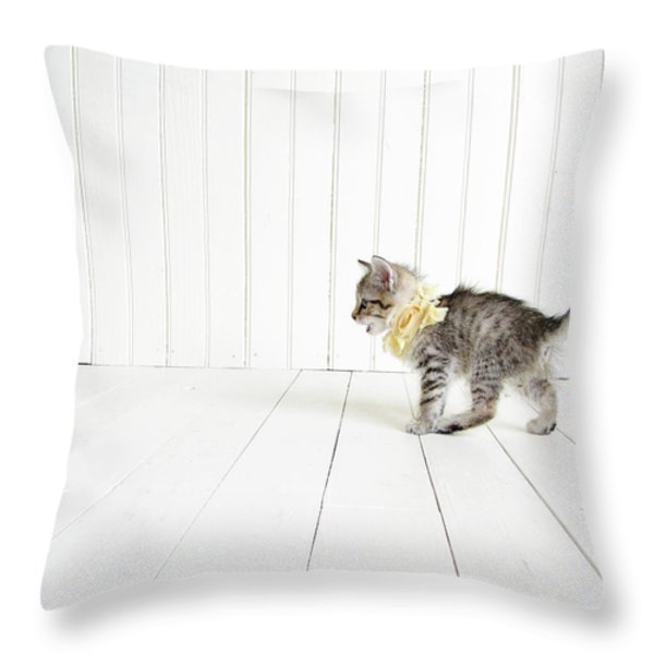 Small Throw Pillow by Amy Tyler