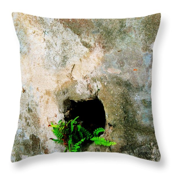Small Ferns Throw Pillow by Perry Webster