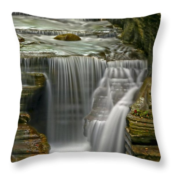 Smooth Throw Pillow by Evelina Kremsdorf