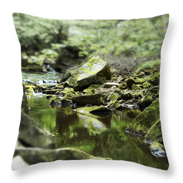Smooth Throw Pillow by Svetlana Sewell