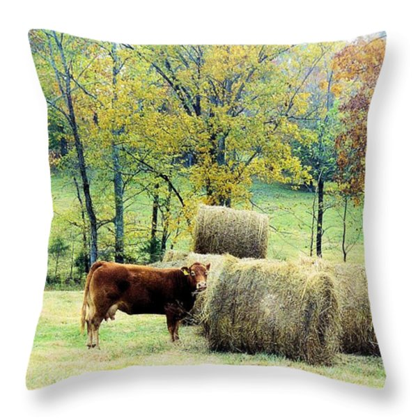 Smorgasbord Throw Pillow by Jan Amiss Photography