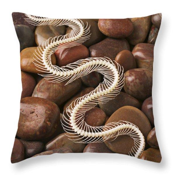 Snake skeleton  Throw Pillow by Garry Gay