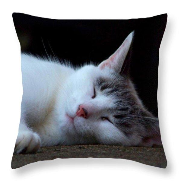 Snooze Throw Pillow by Jai Johnson